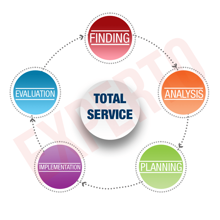 total service-experto
